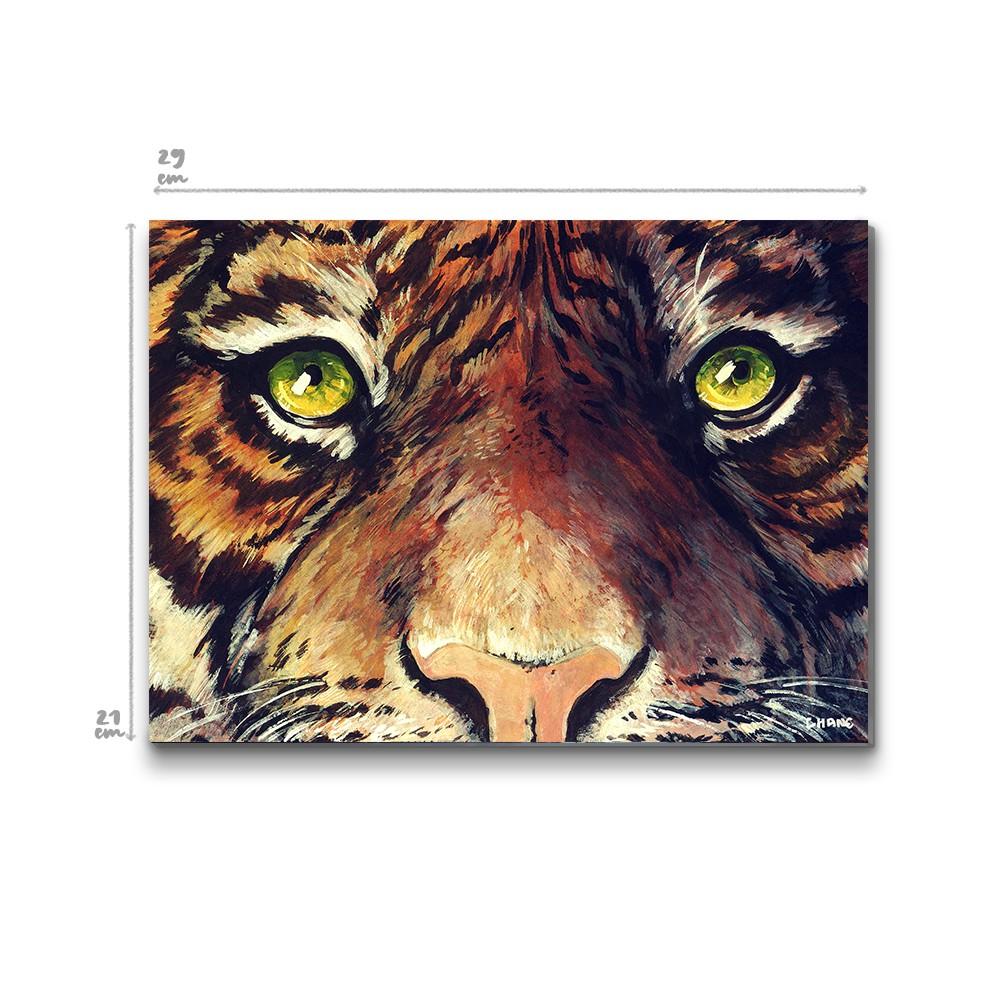 Le regard du Tigre, Chane